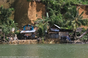 Homes along the river in Bohol